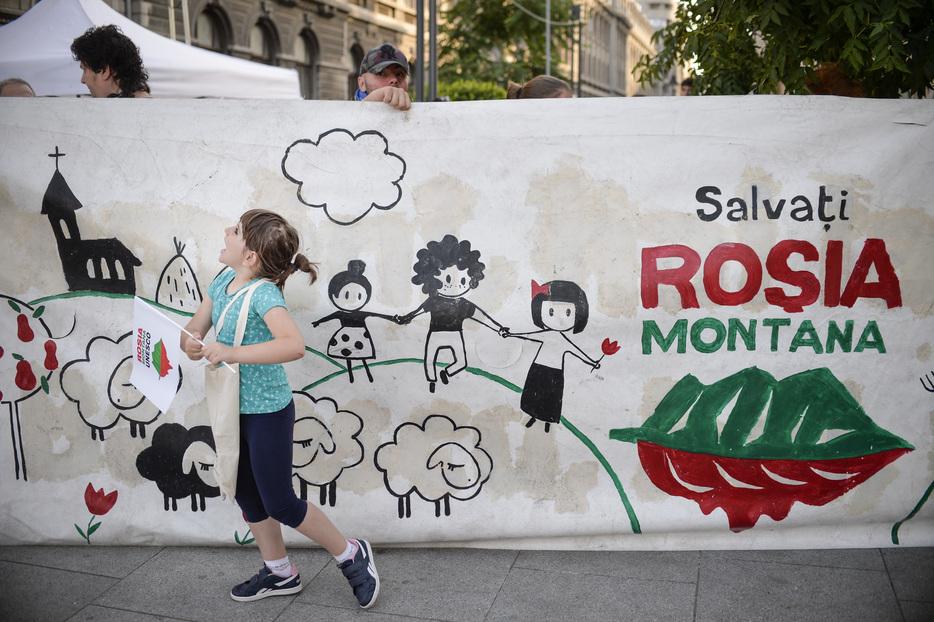 Declarațiile unui fost ministru al Culturii în cazul Roșia Montană: Motivul rămâne pentru mine un mister