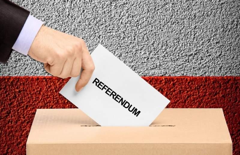 Referendumul pentru modificarea Constituției se apropie. Tot ce trebuie să știi EXCLUSIV