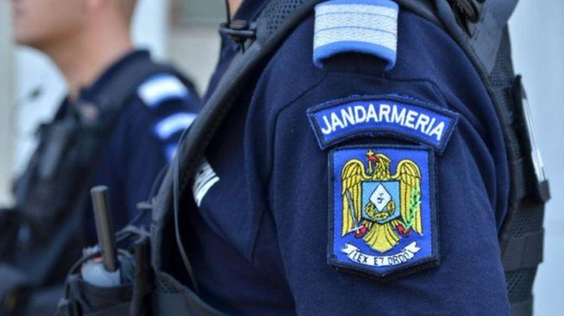 Gafă inedită a Jandarmeriei Sălaj: câinele cu identitatea protejată