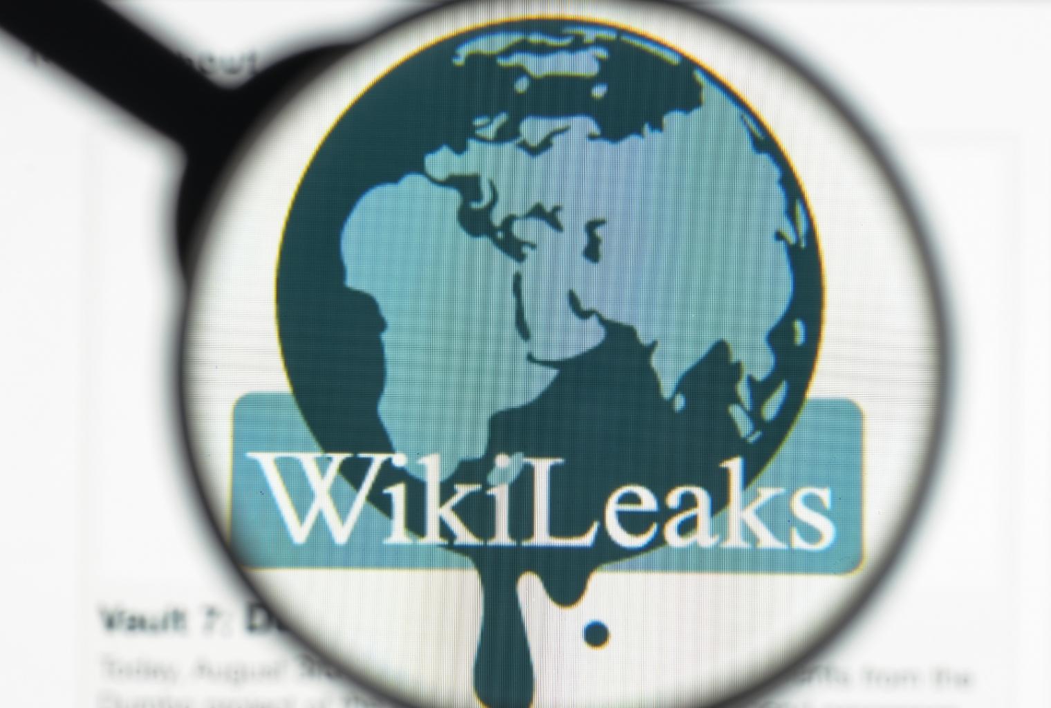 Whistleblower arestat după ce a refuzat să depună mărturie în cazul WikiLeaks