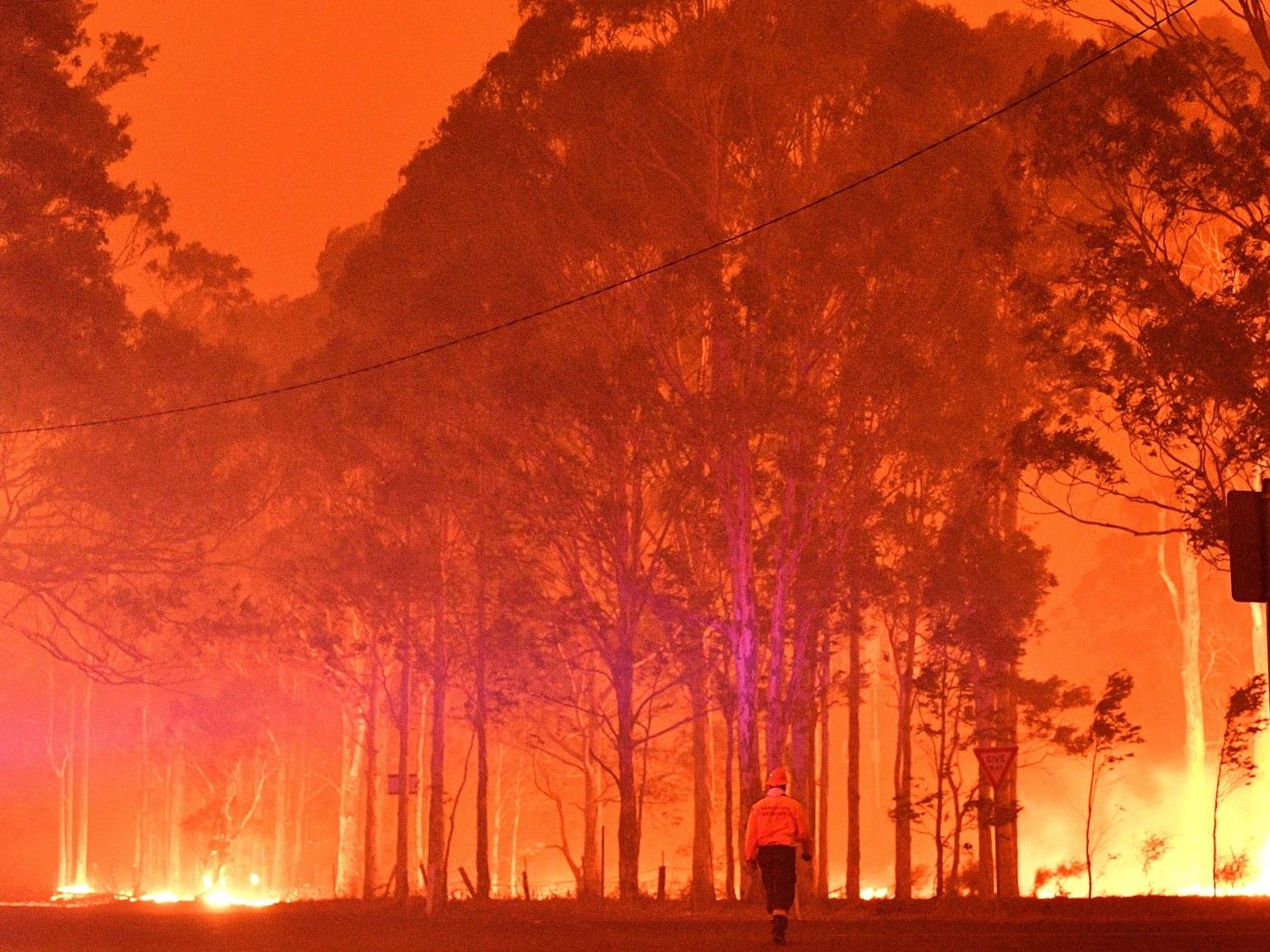 Efectele mai puțin cunoscute ale incendiilor din Australia: poze înșelătoare ajunse virale și negarea schimbărilor climatice