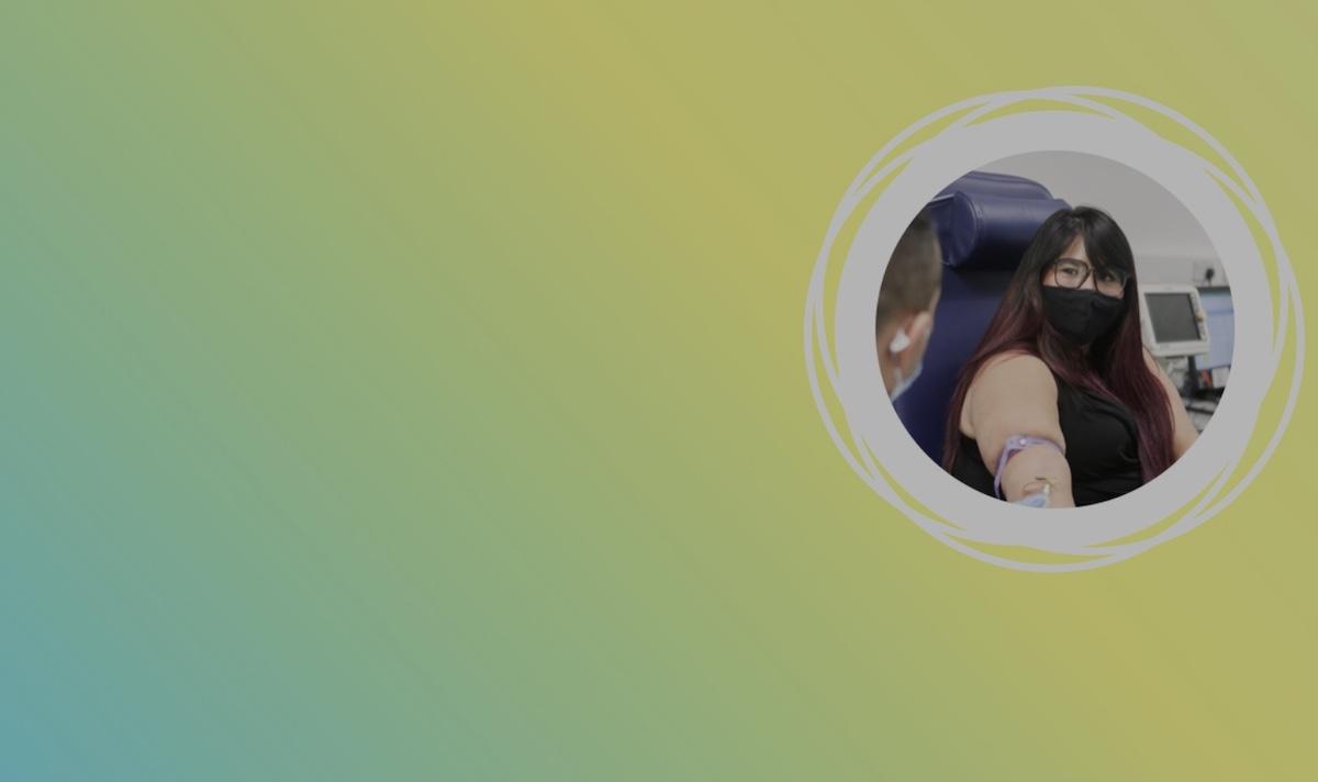 Team Halo, inițiativa cercetătorilor din lume împotriva dezinformării online