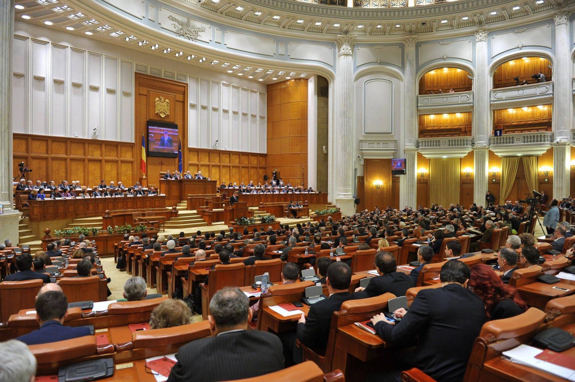 Parlamentul a demis-o pe șefa CNA, Monica Gubernat, prin respingerea raportului de activitate pe 2020