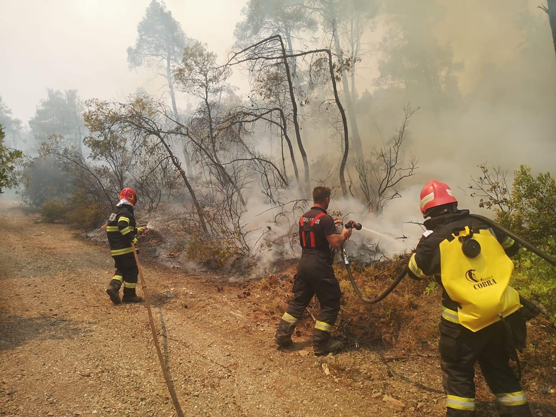 Pompierii români din insula Evia, subiectul unui fake news publicat de un site de știri elen